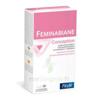 Pileje Feminabiane Conception 30 Comprimés Et 30 Capsules à Ustaritz