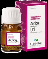 Lehning Arnica Complexe N° 1 Solution Buvable En Gouttes Fl/30ml à Ustaritz