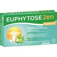 Euphytosezen Comprimés B/30 à Ustaritz