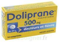 Doliprane 500 Mg Comprimés 2plq/8 (16) à Ustaritz