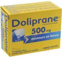 Doliprane 500 Mg Poudre Pour Solution Buvable En Sachet-dose B/12 à Ustaritz
