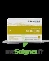 Granions De Soufre 19,5 Mg/2 Ml S Buv 30amp/2ml à Ustaritz