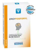 Ergyfosforyl Caps B/60 à Ustaritz