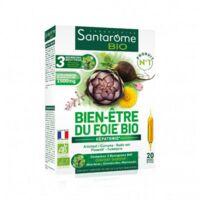 Santarome Bio Bien-être Du Foie Solution Buvable 20 Ampoules/10ml à Ustaritz