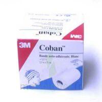 Coban, Blanc (ref. 1582 W) à Ustaritz