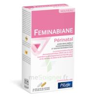 Pileje Feminabiane Périnatal 28 Gélules Blanches Et 28 Gélules Jaunes à Ustaritz