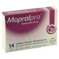 Mopralpro 20 Mg Cpr Gastro-rés Film/14 à Ustaritz