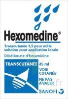 Hexomedine Transcutanee 1,5 Pour Mille, Solution Pour Application Locale à Ustaritz