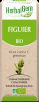 Herbalgem Figuier Macerat Mere Concentre Bio 30 Ml à Ustaritz