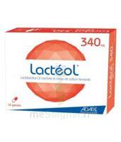 Lacteol 340 Mg, 10 Gélules à Ustaritz