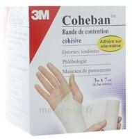Coheban, Blanc 3 M X 7 Cm à Ustaritz