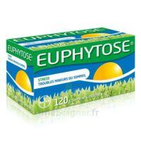 Euphytose Comprimés Enrobés B/120 à Ustaritz