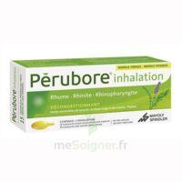 Perubore Caps Inhalation Par Vapeur Inhalation Plq/15 à Ustaritz