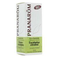 Huile Essentielle Eucalyptus Citronne Bio Pranarom 10 Ml à Ustaritz