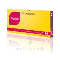 Oligosol Potassium Solution Buvable En Ampoule 14amp/2ml à Ustaritz
