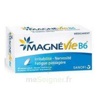 Magnevie B6 100 Mg/10 Mg Comprimés Pelliculés Plaq/60 à Ustaritz