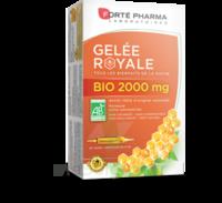 Forte Pharma Gelée Royale Bio 2000 Mg Solution Buvable 20 Ampoules/15ml à Ustaritz