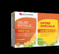 Forte Pharma Gelée Royale 1000 Mg Solution Buvable 2*b/20 Ampoules/10ml à Ustaritz