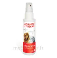 Clément Thékan Caniderma Solution Externe Cicatrisant Spray/125ml à Ustaritz