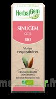 Herbalgem Sinugem Solution Buvable Bio Fl Cpte-gttes/30ml à Ustaritz