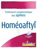 Boiron Homéoaftyl Comprimés à Ustaritz