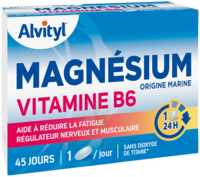 Acheter Govital Magnésium Vitamine B6 Comprimés B/45 à Ustaritz