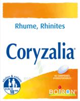 Boiron Coryzalia Comprimés Orodispersibles à Ustaritz